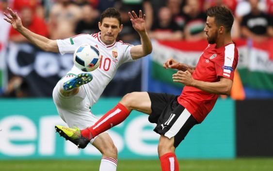 Nhận định bóng đá EURO 2016: Iceland vs Hungary ngày 18/6