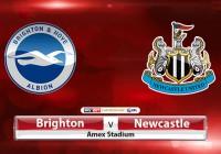 Soi kèo bóng đá Brighton vs Newcastle 02h45, ngày 01/03 Hạng Nhất Anh