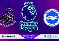 Soi kèo bóng đá Swansea vs Brighton 22h00, ngày 04/11 Ngoại Hạng Anh