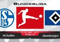 Soi kèo bóng đá Schalke vs Hamburger 21h30, ngày 19/11 Bundesliga
